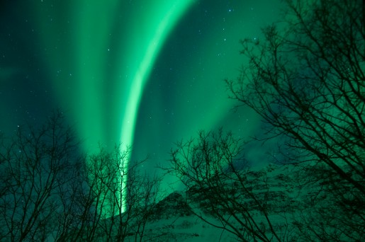 Northern Lights_1