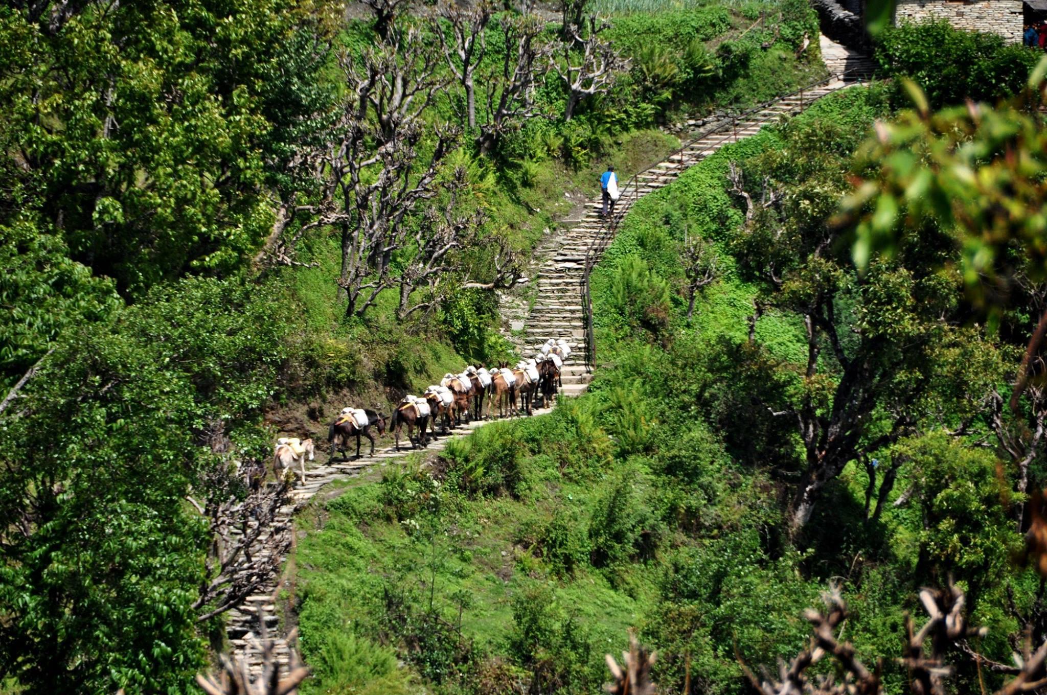 Nepal trekking 6