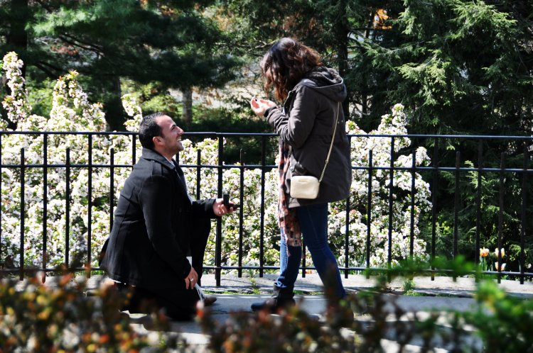 New York wedding proposal in Central Park