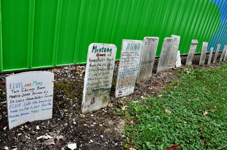 Rabbit graves at Henry's Rabbit Ranch in Staunton, Illinois