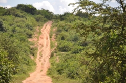 The road to Lake Mburo