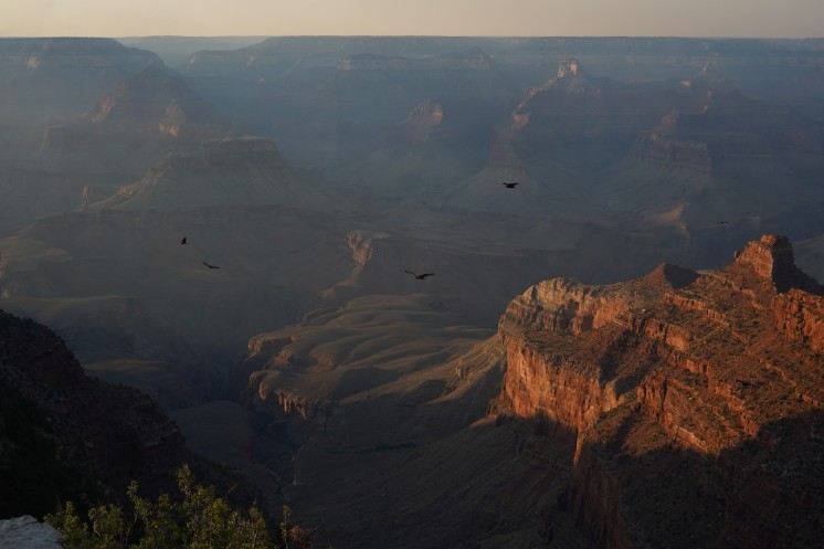 Golden Hour at the Grand Canyon