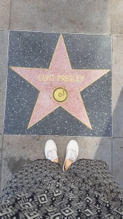 Pink star at the Walk of Fame