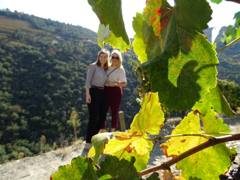 Focus on the wine, exploring one of the many vineyards in the Douro Valley.