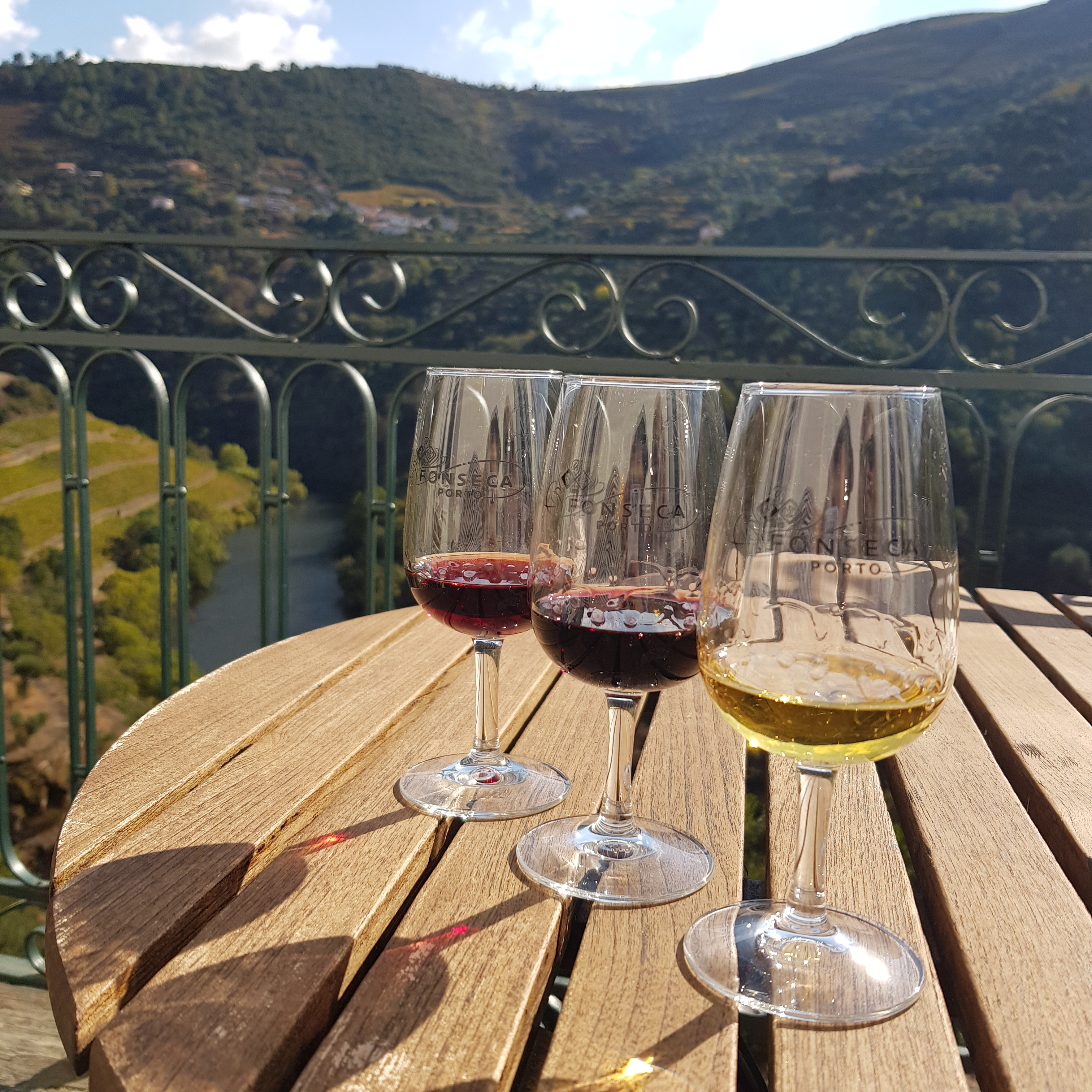 Port tasting with stunning views of the Douro Valley