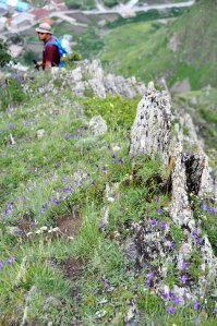 Gergeti church hiking trail